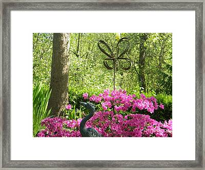 Butterfly By Pinks Framed Print by Kimberlee Weisker