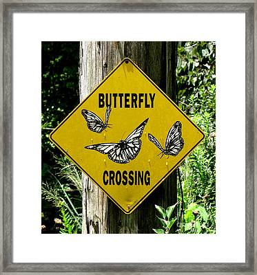 Butterfly Crossing Framed Print