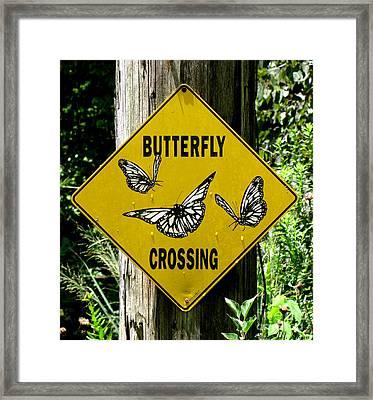 Butterfly Crossing Framed Print
