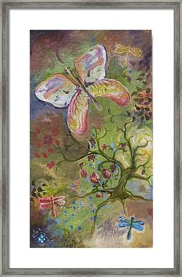 Butterfly Daydream Framed Print by Elizabeth Clary-Boyd