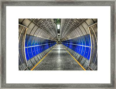 Butterfly Effect Framed Print by Svetlana Sewell