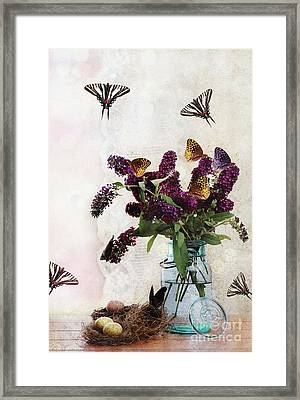 Butterfly Haven Framed Print by Stephanie Frey