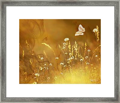 Butterfly Kiss Framed Print by Torie Tiffany