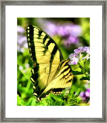 Framed Print featuring the painting Butterfly by Lynne Jenkins