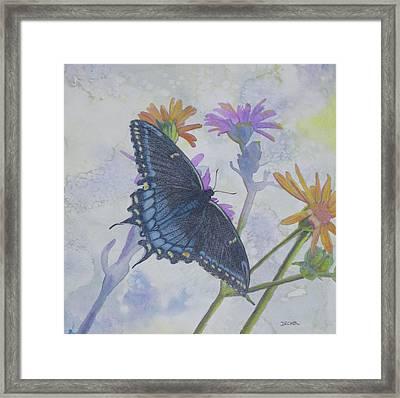 Butterly Framed Print
