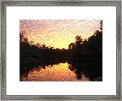 Buttermilk On Fire Framed Print by Warren Clark