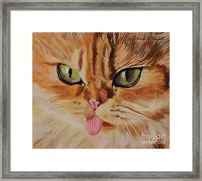 Butterscotch Cute Orange Cat Face Framed Print by Kristi L Randall