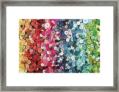 Button Button Framed Print by Catherine MacBride