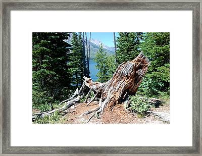 Framed Print featuring the photograph By Jenny Lake by Dany Lison