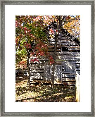 By The Light Framed Print by Rosie Brown
