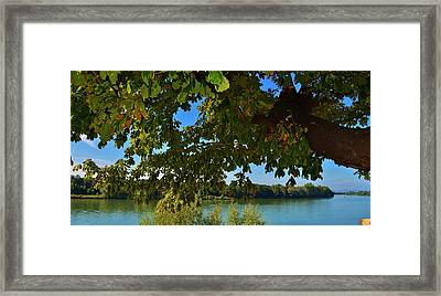 By The River Framed Print by Dany Lison