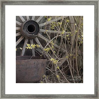 Framed Print featuring the photograph By The Rock Wall 1 by Laurinda Bowling