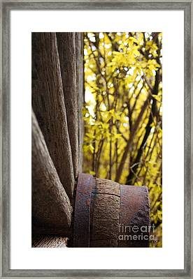Framed Print featuring the photograph By The Rock Wall 2 by Laurinda Bowling