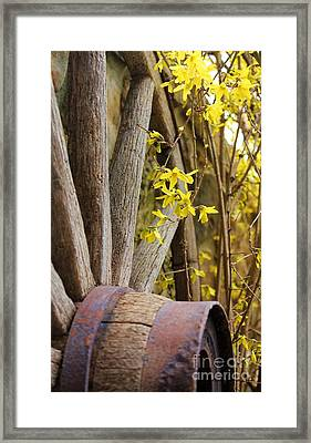 By The Rock Wall 3 Framed Print