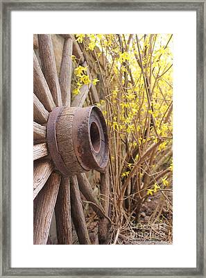 Framed Print featuring the photograph By The Rock Wall 4 by Laurinda Bowling