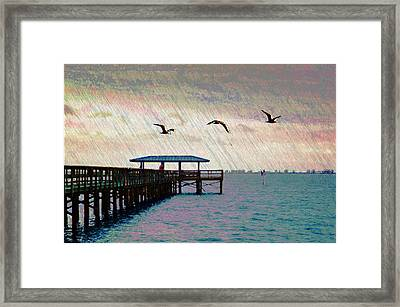 By The Sea Framed Print by Bill Cannon