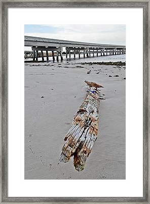 By The Sea Framed Print by Brenda Becker