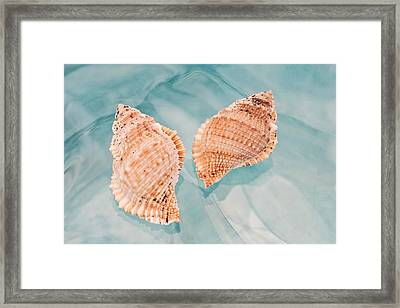 By The Sea Framed Print by Terry Ellis