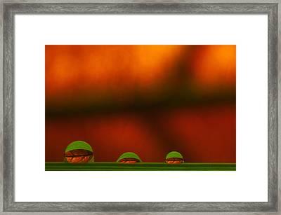 C Ribet Orbscape Three Perceptions Framed Print by C Ribet