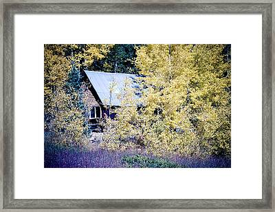 Cabin Hideaway Framed Print by James BO  Insogna