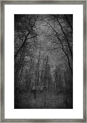Cabin In The Woods Framed Print by Empty Wall