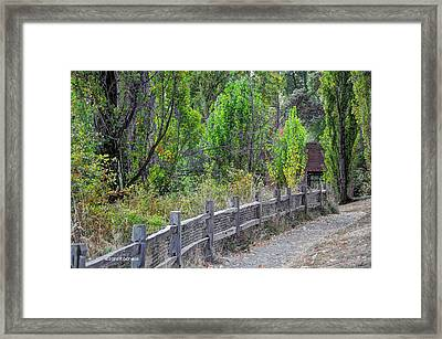 Cabin In The Woods Framed Print by Sarai Rachel