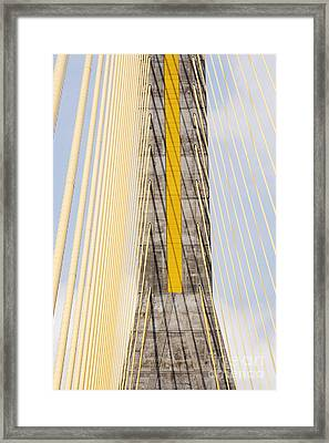 Cables And Tower Of Cable Stay Bridge Framed Print by Jeremy Woodhouse