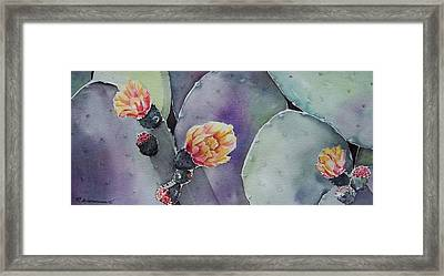 Cactus Bloom Framed Print by Regina Ammerman