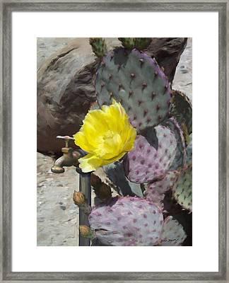 Cactus Flower 2 Framed Print by Snake Jagger