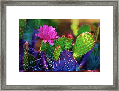 Cactus Flowers In Pink Framed Print