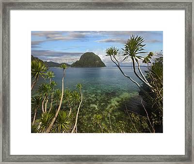 Cadlao Island Near El Nido Palawan Framed Print by Tim Fitzharris
