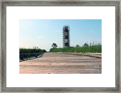 Framed Print featuring the photograph Caged Beauty 1 by Tony Cooper