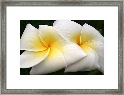 Framed Print featuring the digital art Cake Flowers by Brian Davis