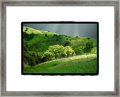 Calabasas Meadow After The Storm Framed Print by Noah Brooks