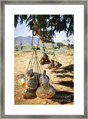 Calabash Gourd Bottles In Mexico Framed Print