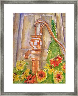 Calico Water Pump Framed Print