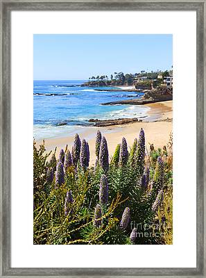 California Coast Flowers Photo Framed Print by Paul Velgos