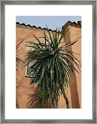 California Dream Framed Print by Todd Sherlock