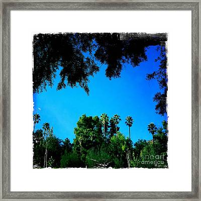 California Dreaming Framed Print by Nina Prommer