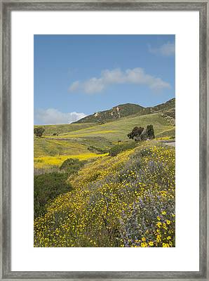 California Hillside View I Framed Print