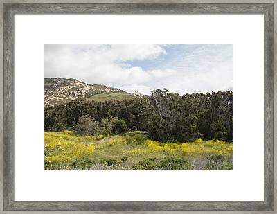 California Hillside View IIi Framed Print