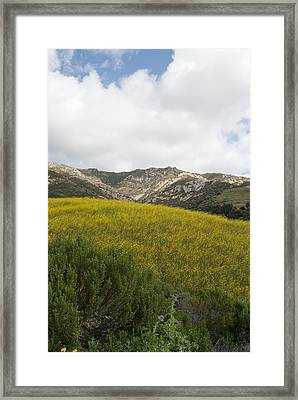 California Hillside View V Framed Print