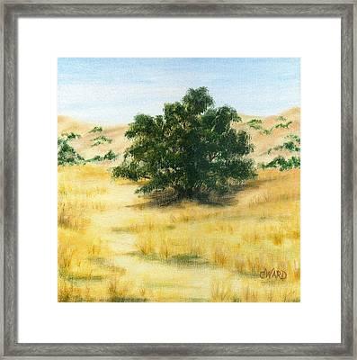 California Oak Framed Print by Colleen Ward