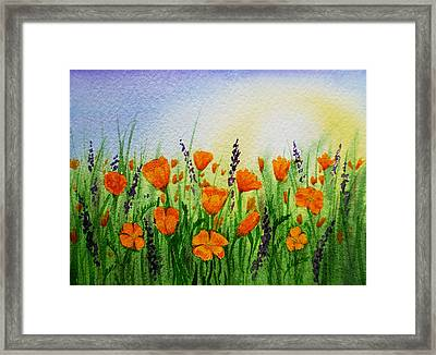 California Poppies Field Framed Print by Irina Sztukowski