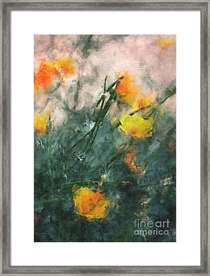 California Poppies Framed Print by Julie Lueders