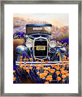 California Poppy Framed Print by Mike Hill