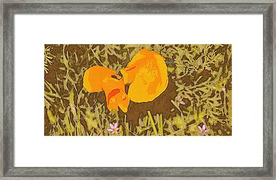 Framed Print featuring the photograph California Poppy by Rima Biswas