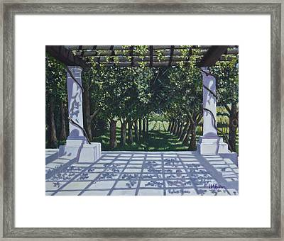 California Vineyard Framed Print by Judy  Hilton
