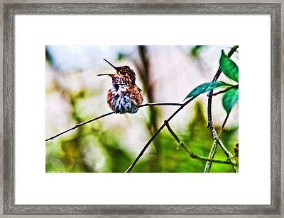Calling Mama Framed Print by Ronald Talley