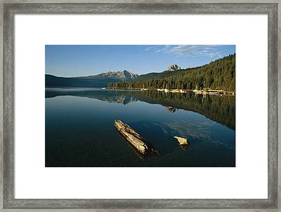 Calm Water With Submerged Log Framed Print by Michael S. Lewis